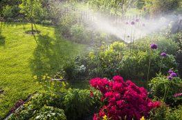 Nawadnianie ogrodu – jak zadbać o środowisko i swój portfel