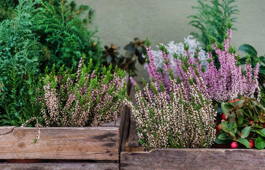 Skrzynki drewniane (nie) tylko na owoce – najpopularniejsze pomysły na aranżacje do domu i ogrodu 3