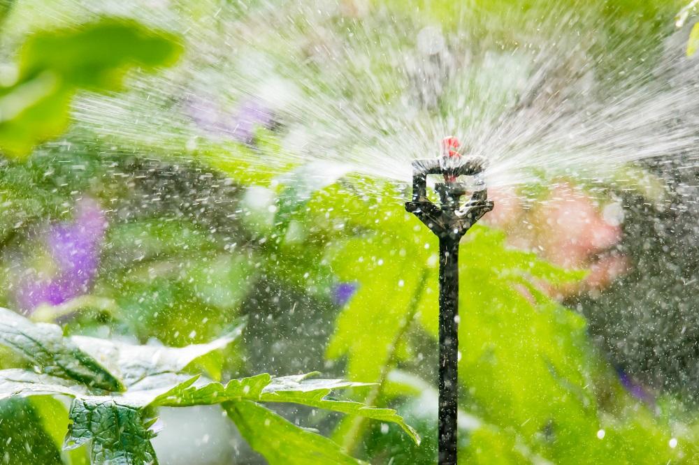 Mikrozraszacz do kropelkowego nawadniania ogrodu