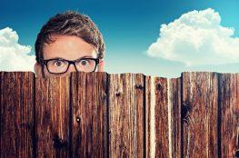 Łatwy i tani sposób na odgrodzenie się od kłopotliwego sąsiedztwa