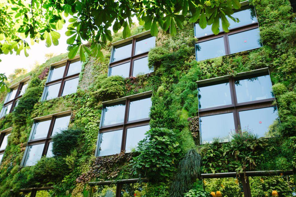 Koncepcja zielonej ekologicznej architektury.