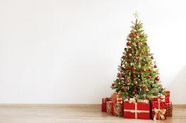 Idą Święta, szanuj las. Dlaczego sztuczna choinka jest lepsza niż prawdziwa?