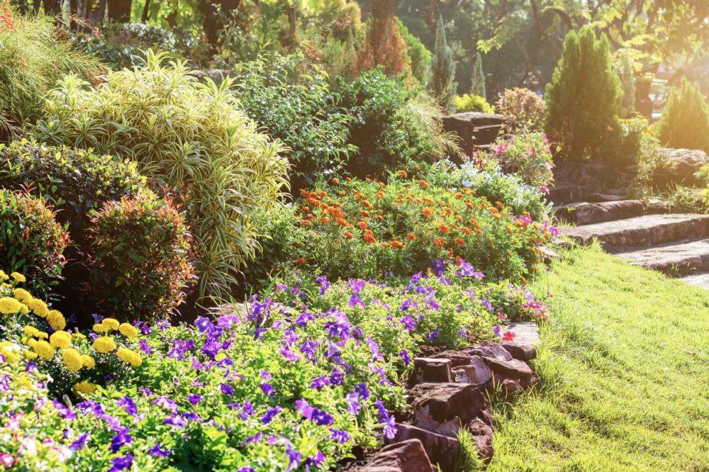 duzy-ogrod-wymaga-zastosowania-systemu-nawadniania-kropelkowego