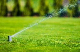 System nawadniania trawnika – krok po kroku
