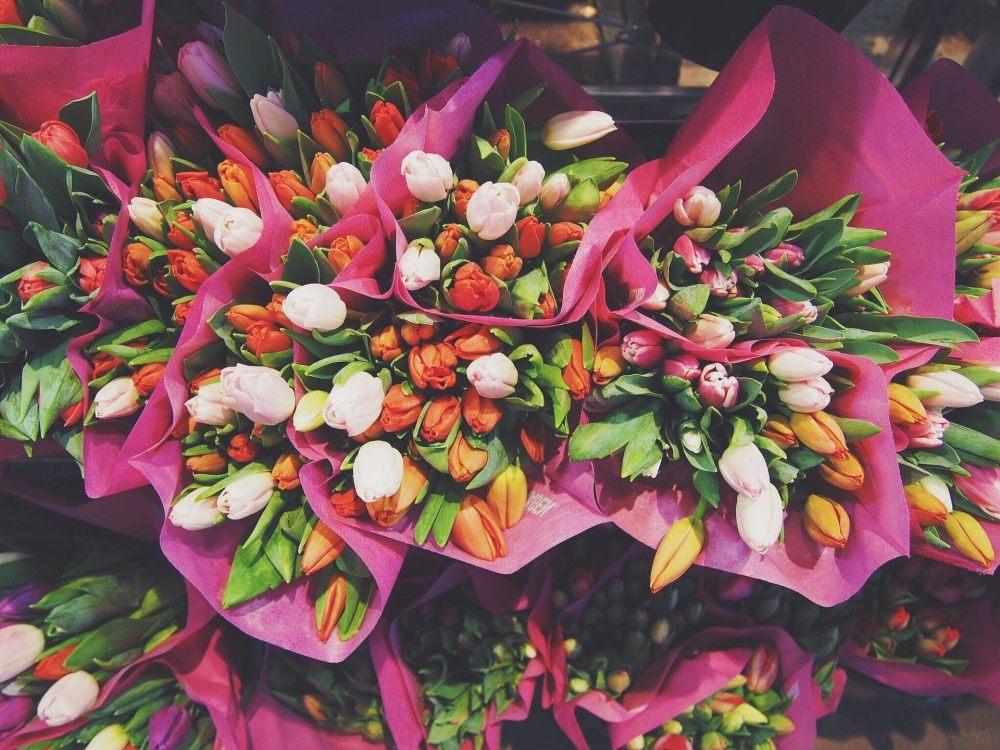 tulipany-na-dzien-kobiet