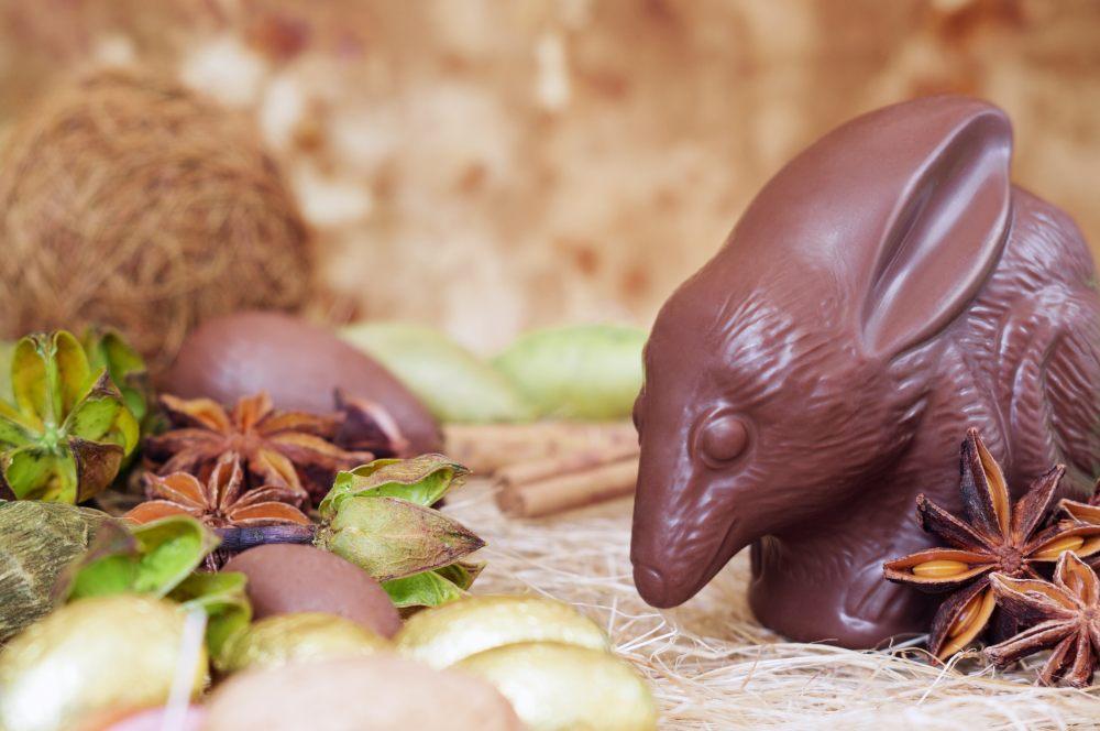 czekoladowy-wielkouch-na-wielkanoc