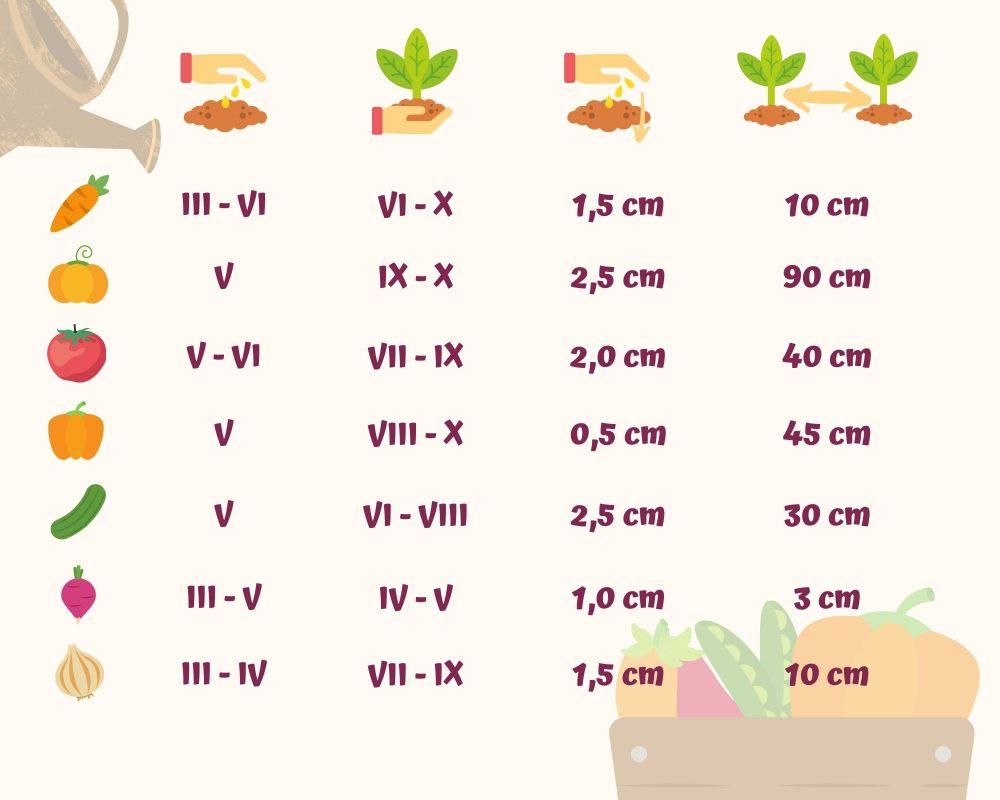 kalendarz-ogrodnika-co-kiedy-sadzic
