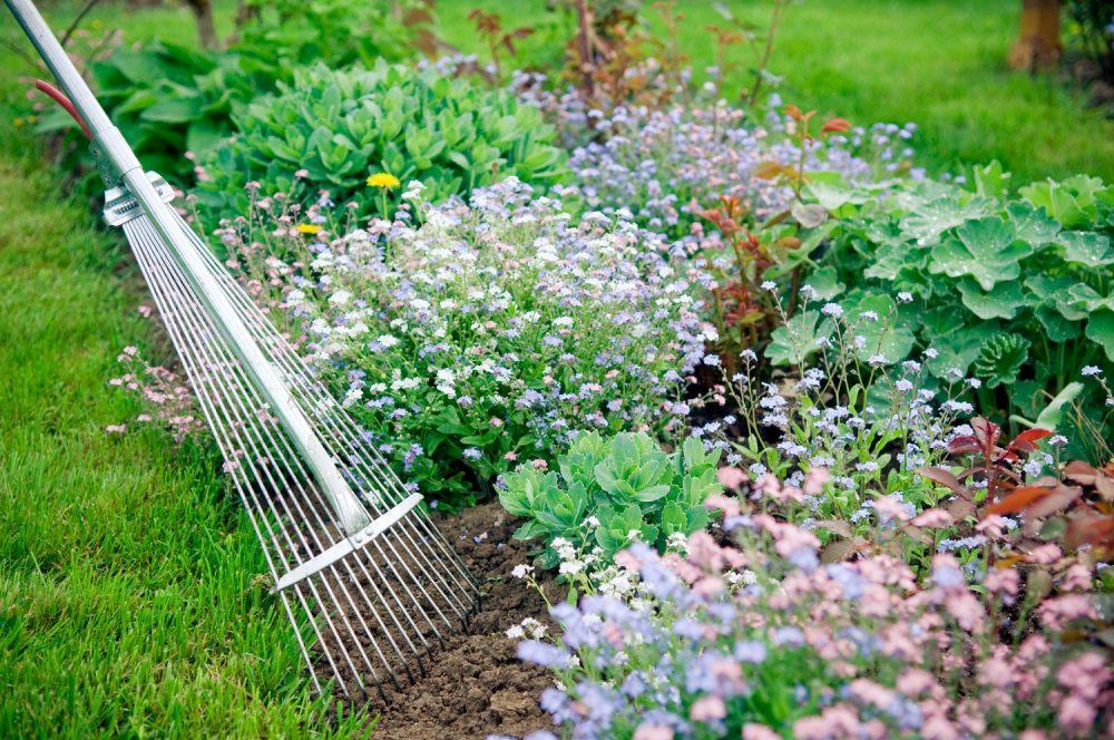 prace-ogrodowe-zwiazane-rabata-kwiatowa