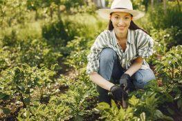 Wiosenne prace w ogrodzie, które odmienią Twoją działkę na cały sezon
