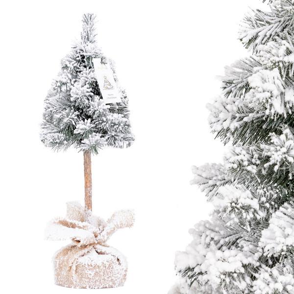 Choinka świąteczna Świerk na pniu ze śniegiem