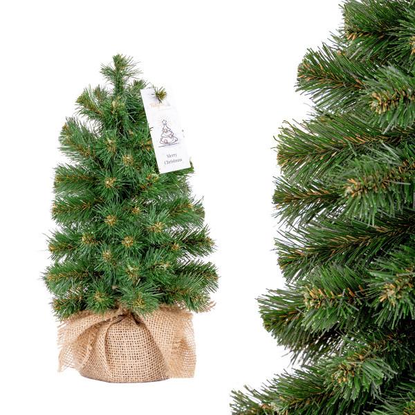 Choinka świąteczna Jodła Nordmanna mini
