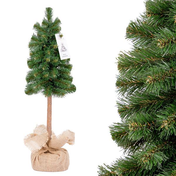 Choinka świąteczna Świerk na pniu zielony